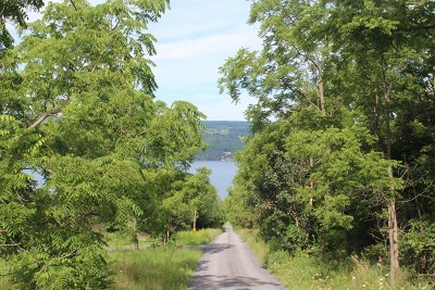 Lots and Land For Sale: Willow Point