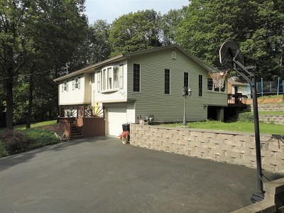 Single Family Home For Sale: 136 Falls View Drive