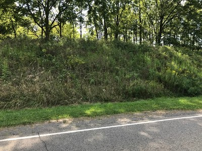 Schuyler County Residential Lots & Land For Sale: Belle Cornell Dr
