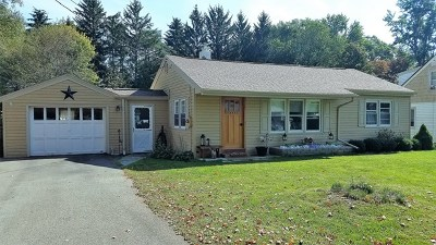 Single Family Home For Sale: 106 Hanlon Drive