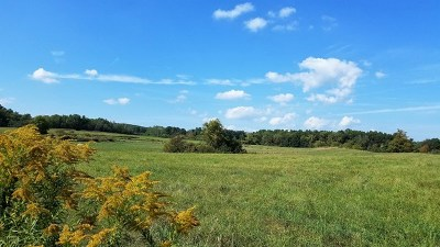 Schuyler County Residential Lots & Land For Sale: Jennings Road