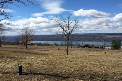 Schuyler County Residential Lots & Land For Sale: 3759 Lake Ridge Drive