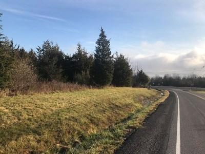 Dundee Residential Lots & Land For Sale: 173 Dundee-Starkey Road