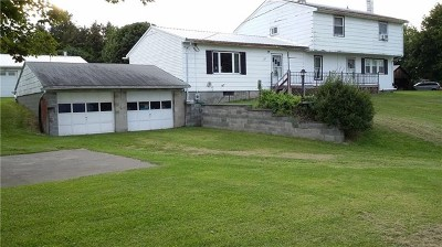 Dundee Single Family Home For Sale: 5992 State Route 14a
