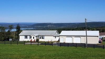 Watkins Glen Single Family Home For Sale: 937 Kelly Hill Road
