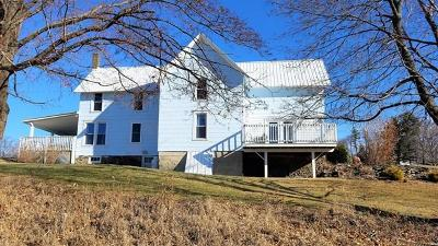 Single Family Home For Sale: 3551 State Route 79
