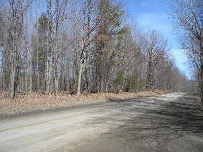 Watkins Glen NY Residential Lots & Land For Sale: $149,900
