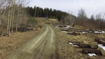 Montour Falls Residential Lots & Land For Sale: County Rd. 8