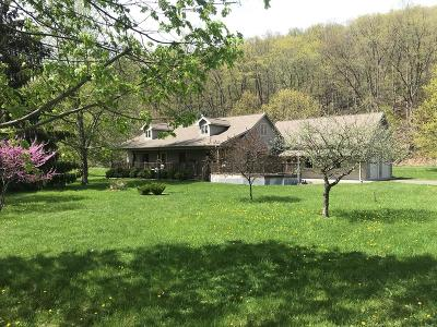 Montour Falls Single Family Home For Sale: 4707 Cotton Hanlon Road