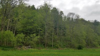 Schuyler County Residential Lots & Land For Sale: County Road 16
