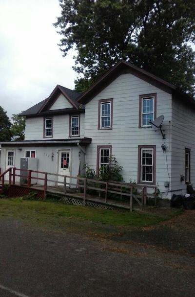 Montour Falls Multi Family Home For Sale: 106 W Washington St