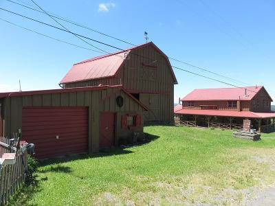 Watkins Glen Single Family Home For Sale: 3069 County Road 22