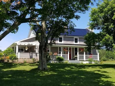 Watkins Glen Single Family Home For Sale: 2655 Vanzandt Hollow