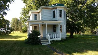 Dundee Single Family Home For Sale: 97 Seneca St