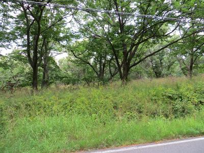 Schuyler County Residential Lots & Land For Sale: Havana Glen Road