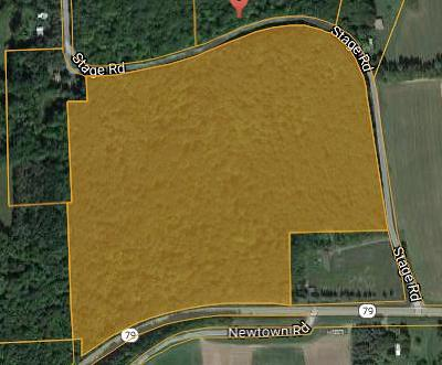 Schuyler County Residential Lots & Land For Sale: Stage Road