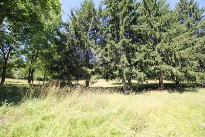 Schuyler County Residential Lots & Land For Sale: Lot 1 Orchard Avenue