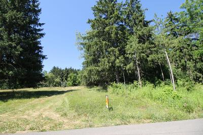 Schuyler County Residential Lots & Land For Sale: Lot 2 Orchard Avenue