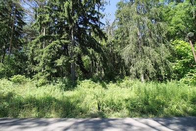 Watkins Glen Residential Lots & Land For Sale: Lot 3 Orchard Avenue