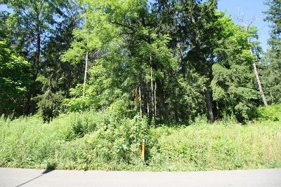 Schuyler County Residential Lots & Land For Sale: Lot 4 Orchard Ave