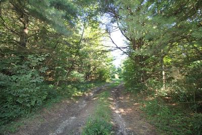 Lots and Land For Sale: Hornby