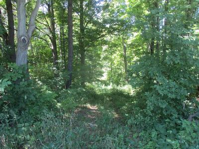 Schuyler County Residential Lots & Land For Sale: Hall Road
