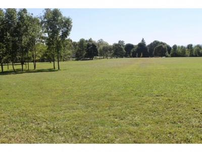 Hector Residential Lots & Land For Sale: 5262 County Rd 4