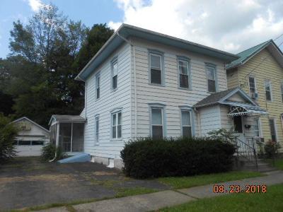 Watkins Glen Single Family Home For Sale: 203 S Decatur St.