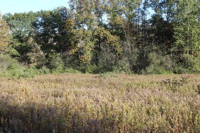 Schuyler County Residential Lots & Land For Sale: State Route 226
