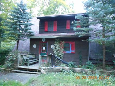 Montour Falls Single Family Home For Sale: 2490 State Route 414