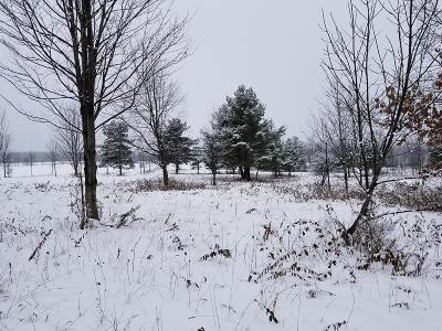 Schuyler County Residential Lots & Land For Sale: 00 Meads Hill Road
