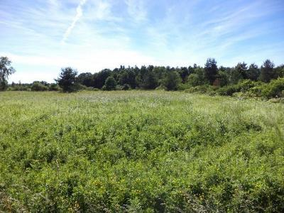 Schuyler County Residential Lots & Land For Sale: Lot 2 Wynn Rd