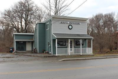 Burdett NY Commercial For Sale: $180,000
