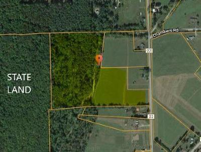 Schuyler County Residential Lots & Land For Sale: 1691 County Rd 22