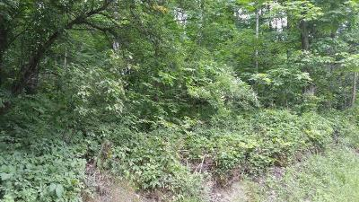 Schuyler County Residential Lots & Land For Sale: 00 Carley Road