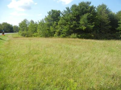 Watkins Glen Residential Lots & Land For Sale: 2645 County Road 23