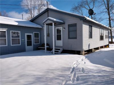 Dundee Single Family Home For Sale: 92 Stocum Road