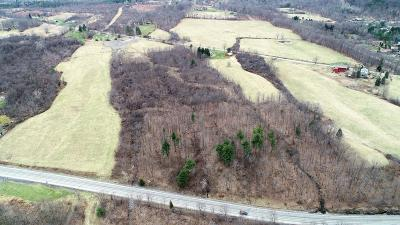 Schuyler County Residential Lots & Land For Sale: County Road 17