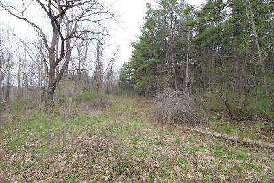 Schuyler County Residential Lots & Land For Sale: Harp Lane Lot A