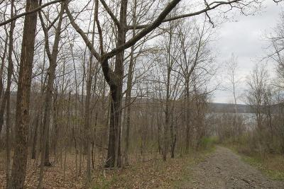 Schuyler County Residential Lots & Land For Sale: Harp Lane Lot B