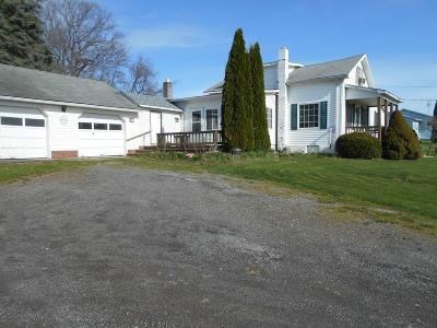 Dundee Single Family Home For Sale: 4584 Dundee Himrod Road
