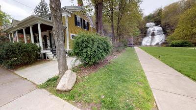 Montour Falls Single Family Home For Sale: 109 S Genesee Street