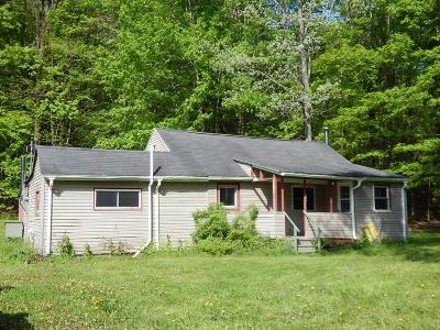 Horseheads NY Residential For Sale: $59,900