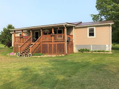 Hector Single Family Home For Sale: 4118 Dugue Road
