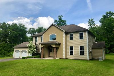 Montour Falls Single Family Home For Sale: 2108 Price Road