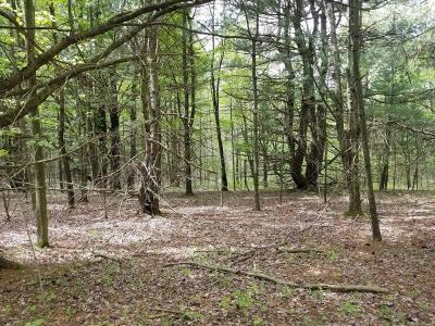 Montour Falls Residential Lots & Land For Sale: 00 Gano Road Lot 4