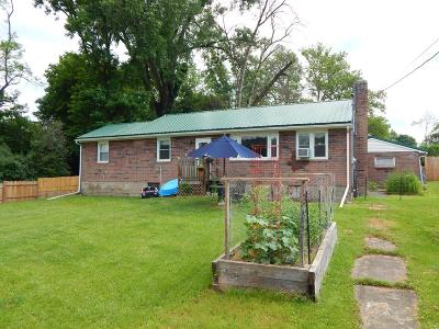 Montour Falls Single Family Home For Sale: 272 S Catherine Street