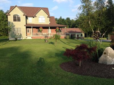Single Family Home For Sale: 2596 State Route 228