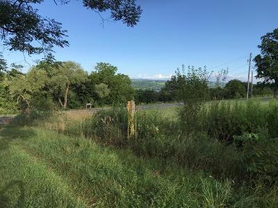 Hector Residential Lots & Land For Sale: State Route 414