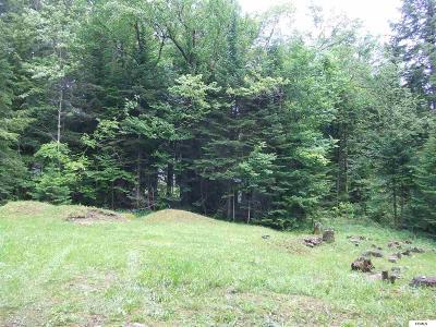 Caroga Lake Residential Lots & Land For Sale: 127 Dwyer Ln